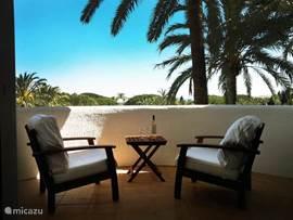 Het balkon met uitzicht op de palmen