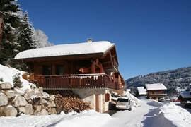 Bij het chalet is altijd ruim voldoende open haard hout beschikbaar. Er kan voor en naast het chalet geparkeerd worden. ´s winters wordt de weg rond half 8 's ochtends sneeuw vrij gemaakt.