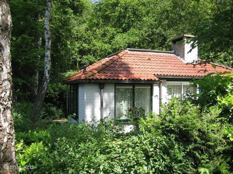 Vacation rental Netherlands – bungalow the woodpecker