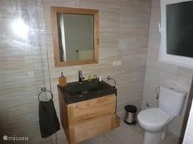 De geheel gerenoveerde badkamer is voorzien van alle luxe.