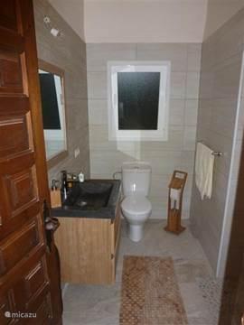 Deze badkamer heeft een ruime inloopdouche, toilet en wastafelmeubel met hardstenen wasbak