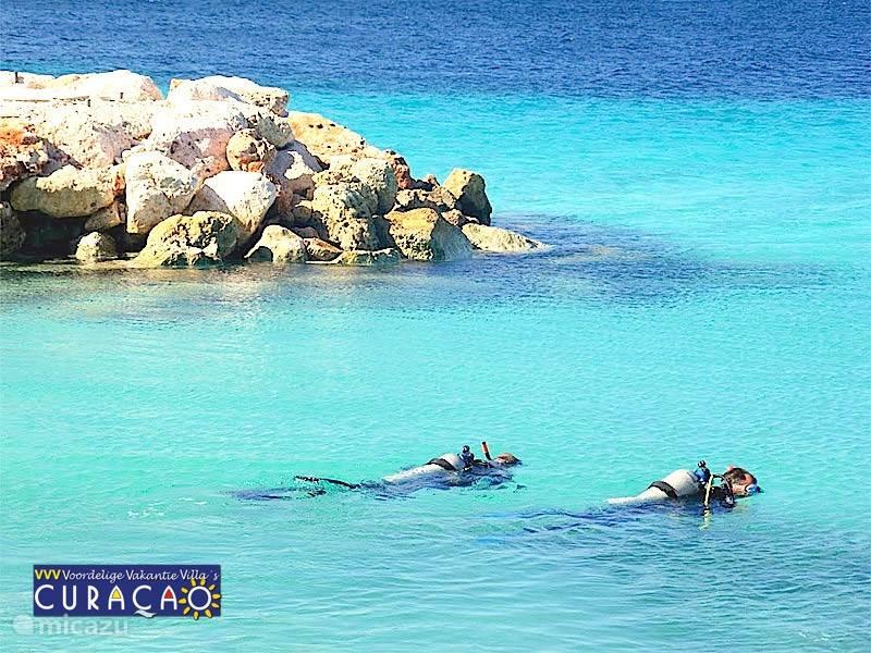 Ook in de baai van Coral Estate kunt u uitstekend duiken  en snorkelen. Zo heeft u uw eigen duikplek 'voor de deur'!