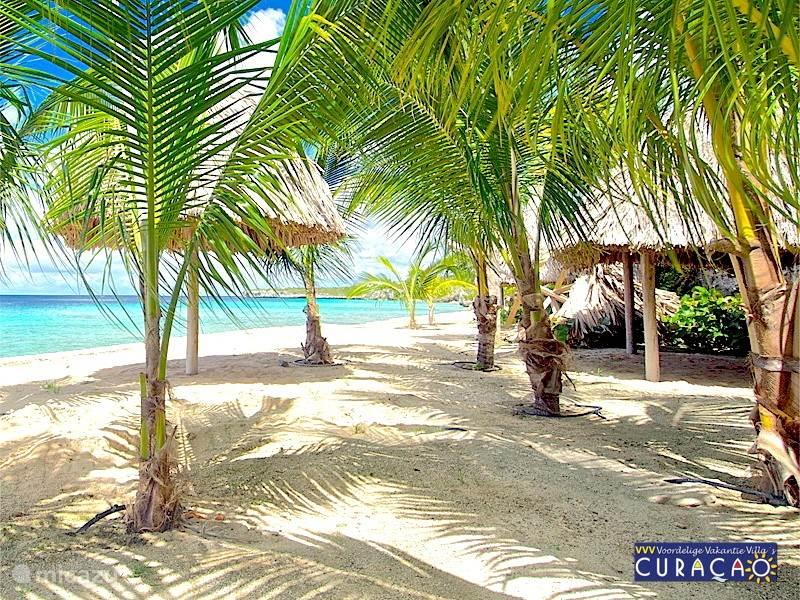 Coral Estate heeft een eigen privé strand; niet toegankelijk voor dagjesmensen. Ook het naastgelegen Daaibooi beach en Porto Marie staan bekend als de mooiste stranden en duik- en snorkelplekken van Curacao.