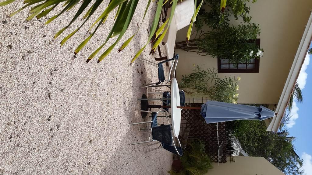 Ruim en gezellig terras met heerlijke zonnebedden