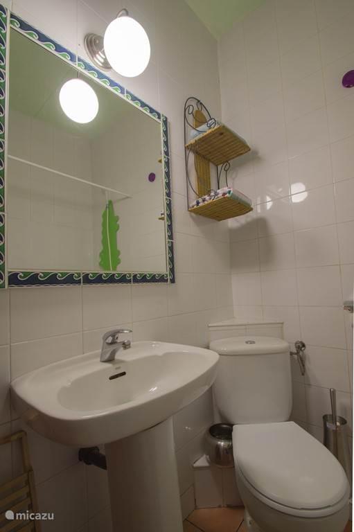 De Badkamer waar niets aan ontbreekt. Een haardroger met diffuser is beschikbaar.