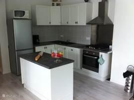 Keuken met vaatwasser, magnetron, oven, koelkast etc.
