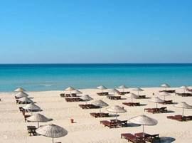 De paradijslijke stranden van Didim op 60min! Zonnebaden op idyllische stranden zoals in de boekjes? Dan is Didim de plek!!! In Didim heeft u ook de wereldberoemde Apollo temple... een echte aanrader!