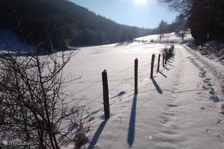 winter wandeling vanuit het huis