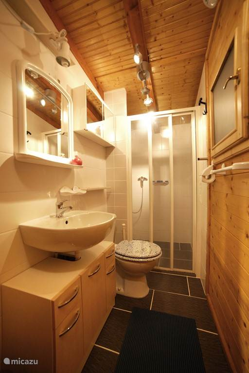 Bathroom with toilet, sink and shower.