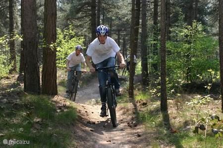 Wandern und Mountainbiken