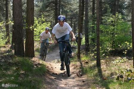 hiking and mountain biking