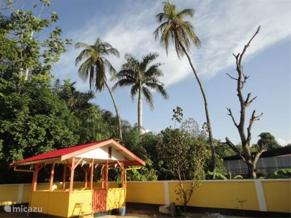 Kwatta, Paramaribo