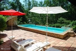 Het ('oude') zwembad met parasols en ligbedden.