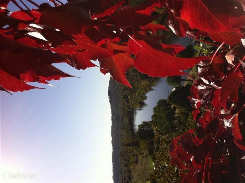 Een uitkijk over de rivier de Dordogne, gezien vanuit het pittoreske plaatsje La Roque Gageac.