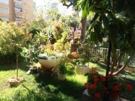 de tuin wordt grotendeels onderhouden door de bewoners die er hun hobby van hebben gemaakt