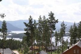 Uitzicht vanuit de woning