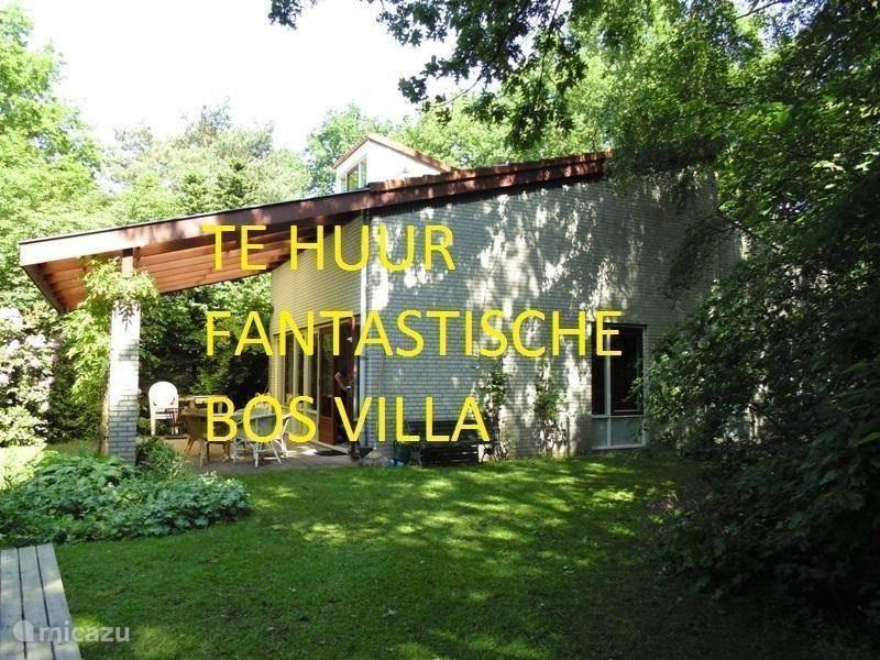 Vakantiehuis Nederland, Gelderland, Halle villa Villa Bos en Enk