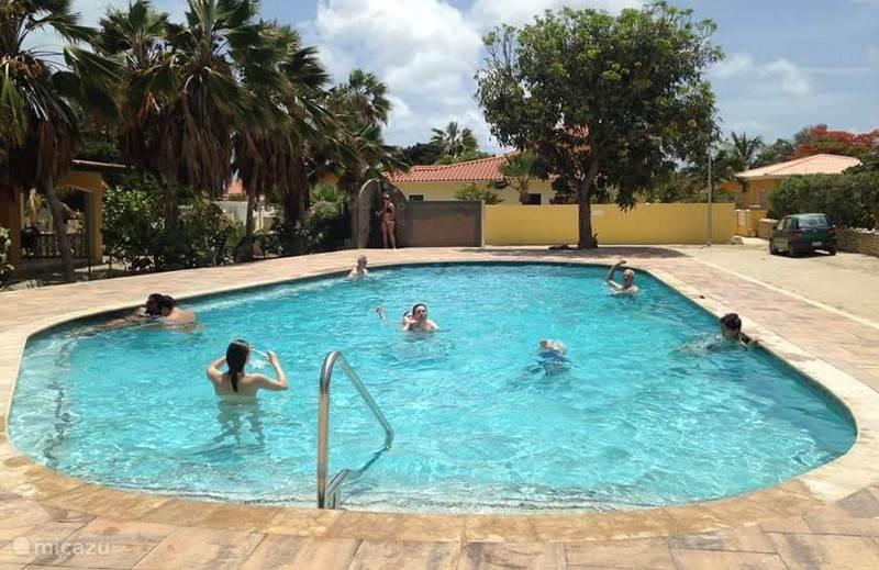 Het nieuwe zwembad (juli 2015)