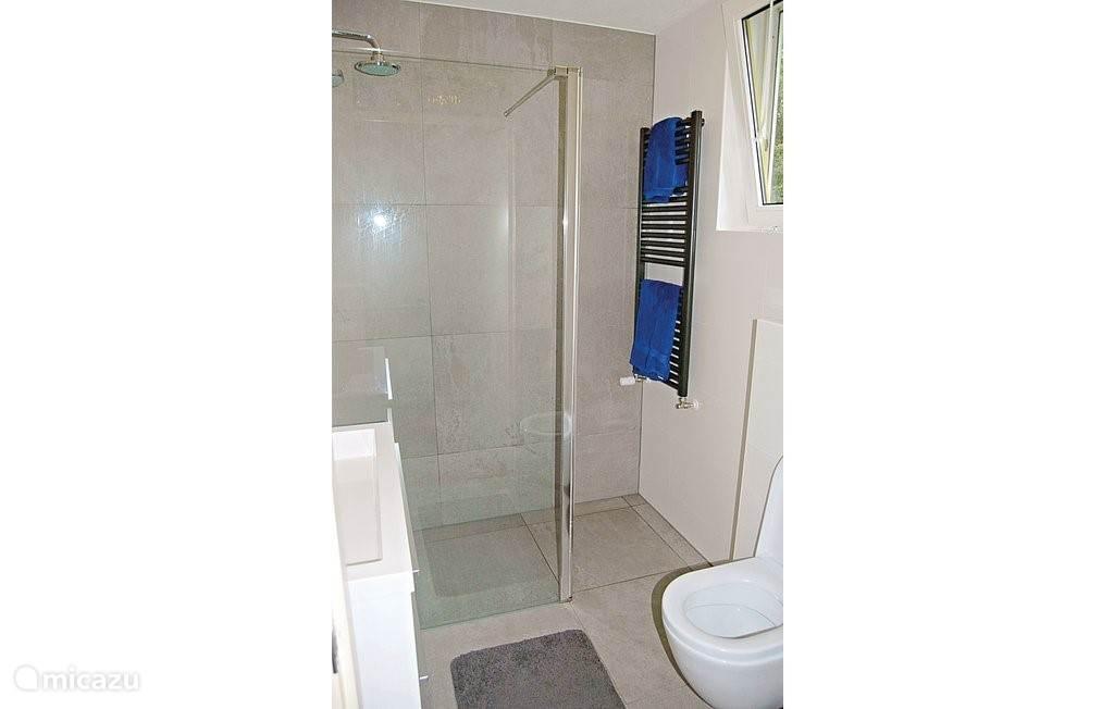 Moderne badkamer (2014) met regendouche, wastafel en toilet