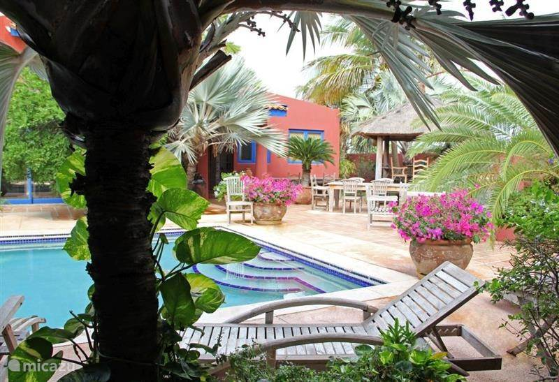 Vakantiehuis Aruba, Noord, Palm Beach Appartement La Maison Aruba