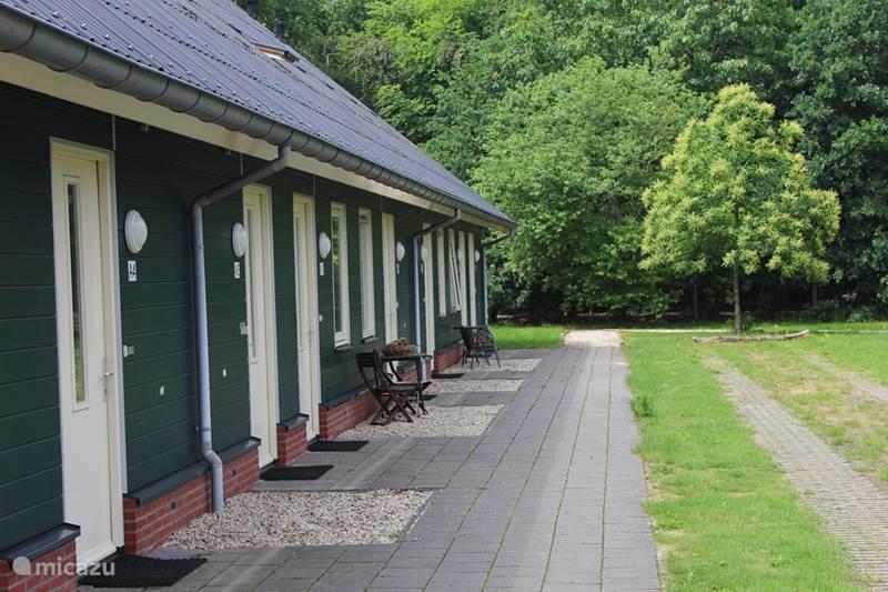 Vakantiehuis Nederland, Overijssel, Rheezerveen Vakantiehuis Horsetellerie 6-pers. + kinderkamer