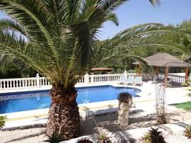 Grote tuin met buitenzwembad