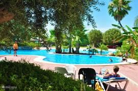 Het gezamelijke zwembad van de Mazarrón Country Club. Hier kunt u gratis gebruik van maken.