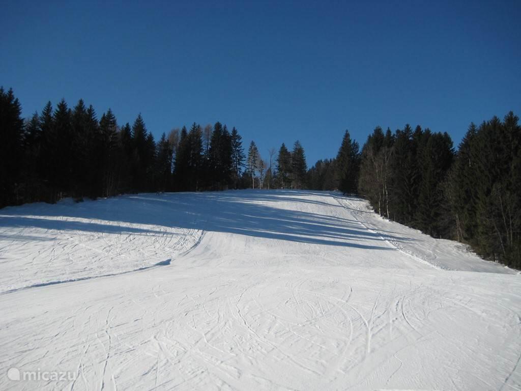 Skiën in Kötschach en omgeving