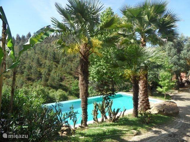 Vakantiehuis Portugal, Noord-Portugal – vakantiehuis Quinta dos Moinhos - Casa do Azeite
