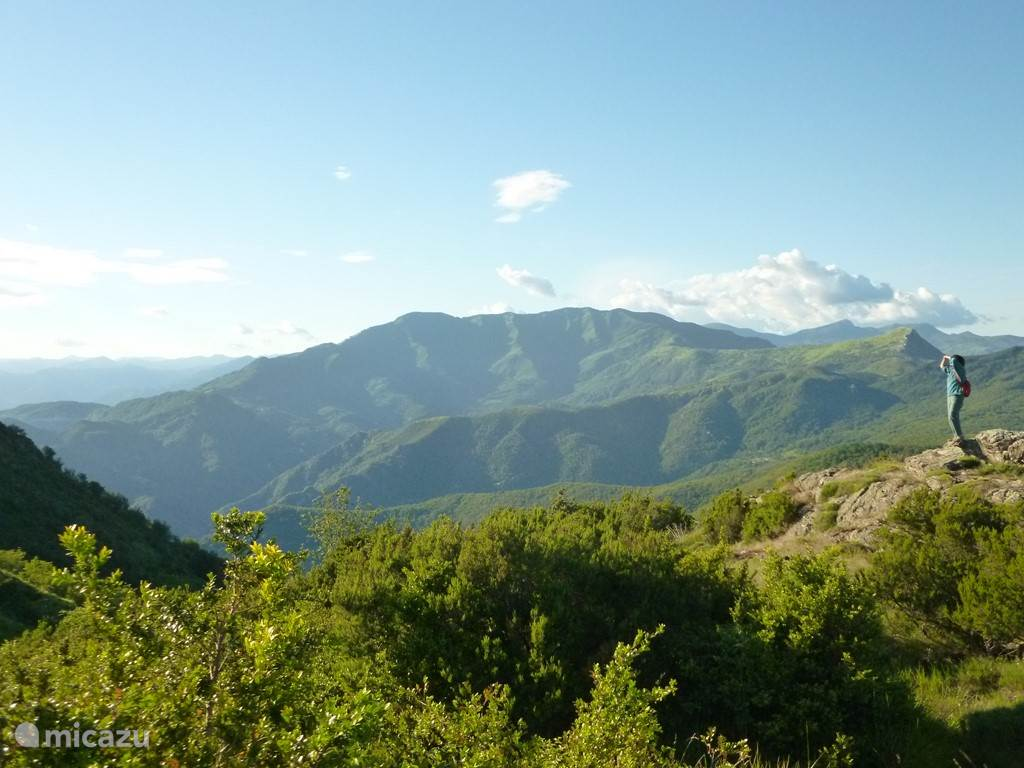 Valle di Lagorara