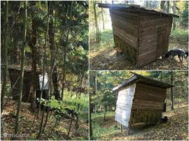 Feeding hut in the woods behind our house. In winter it is fed to the wildlife that lives in the many forests.