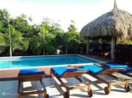 Aan het zwembad zijn er verschillende zonnebedden en hangmatten voor de gasten