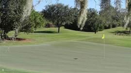 Golfcource 15