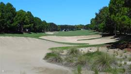 Golfcource 16
