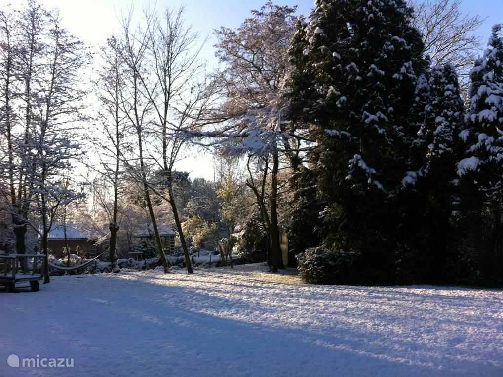 De tuin in de winter; bijna net zo mooi als de zomer.