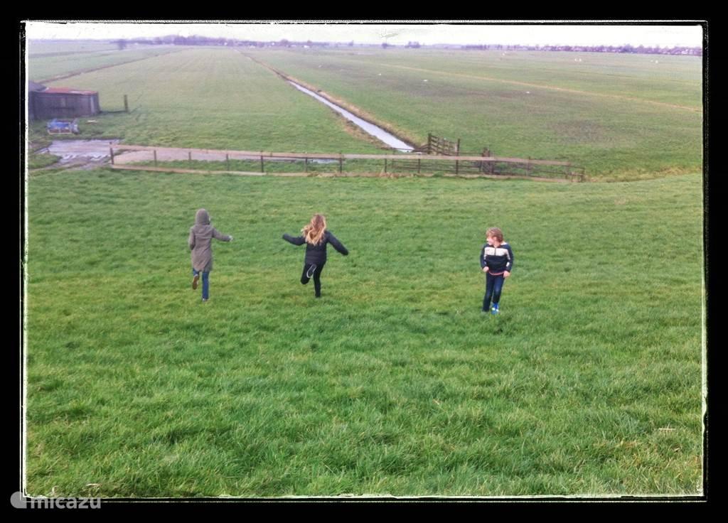 Stukje wandelen... of rennen. Oktober 2013.