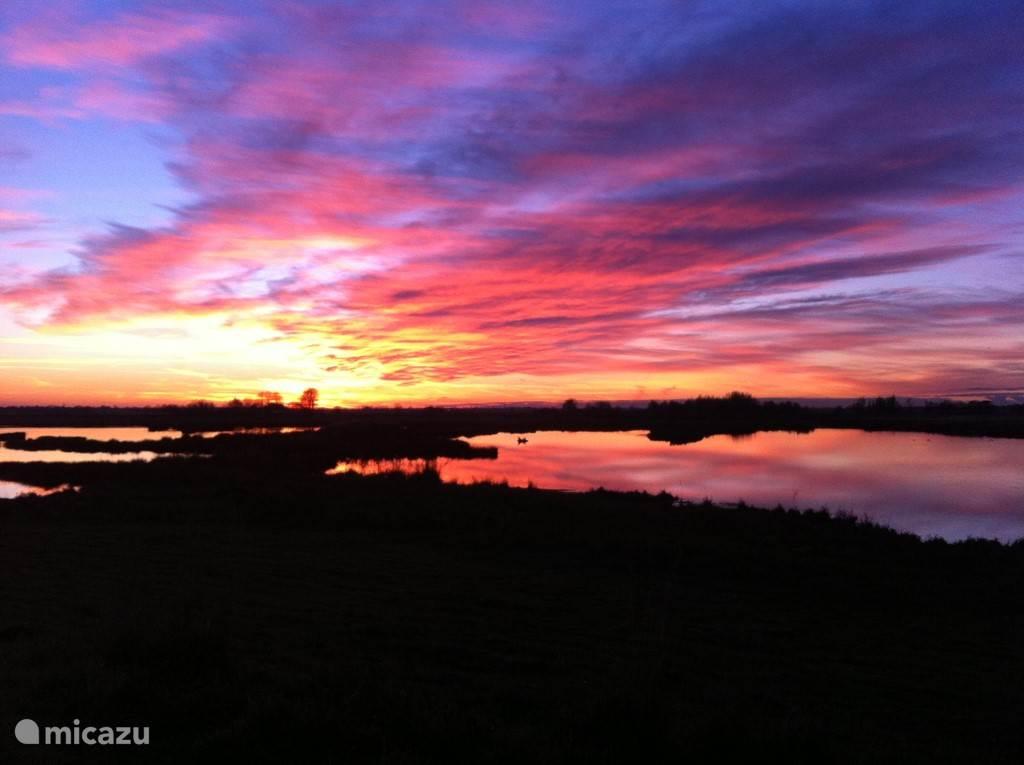 Natuurgebied De Groene Jonker, achter ons huis, met fantastische vergezichten en elke dag een andere, spectaculaire zonsondergang. Vogelaars komen hier uit alle windstreken naar toe vanwege de zeldzame soorten.