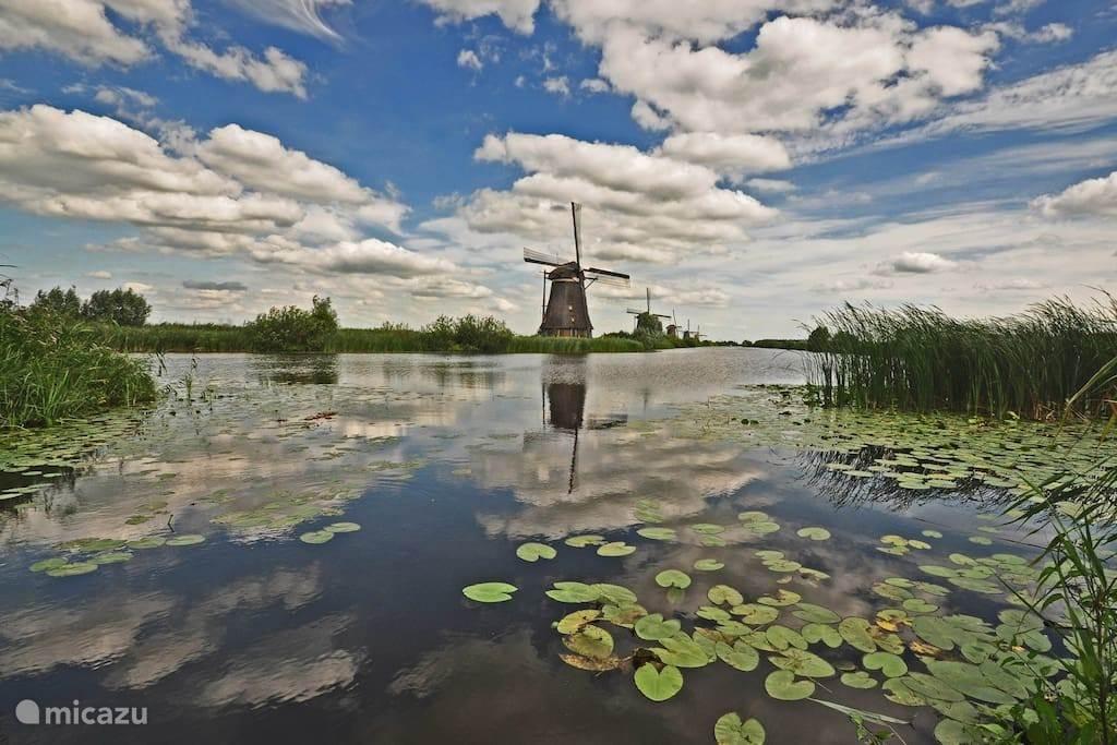 Het Groene Hart behoort tot de mooiste natuurgebieden van Nederland