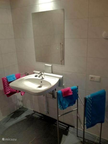 De gote badkamer beneden