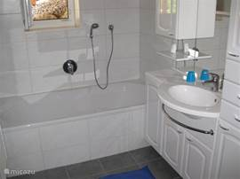 Bathroom in basement with bath, sink and separate shower