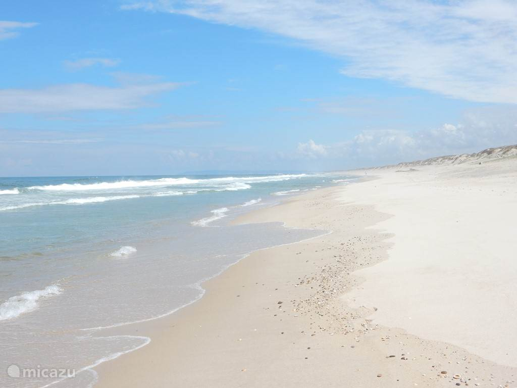 Het strand van Pedrogao en Praia de Vieiria