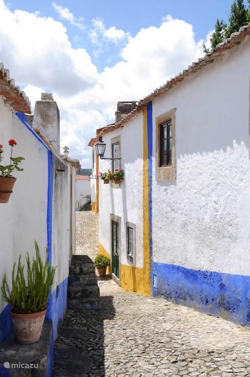 Historische plaatsjes zoals Obidos