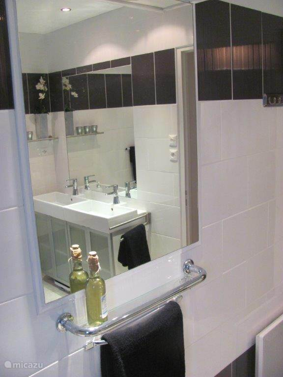 badkamerspiegel met planchet