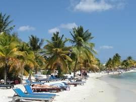 mambo beach ligt op 10 minuten
