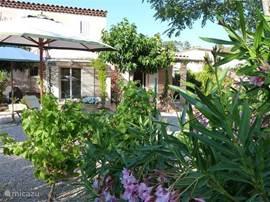 De sfeervolle tuin gelegen op het zuiden geeft u meer dan voldoende beschutting en privacy. Gedurende alle momenten van de dag kunt u in de tuin genieten van de zon of juist van een schaduwrijk plekje.