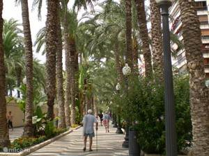 Stad Alicante