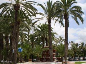 Palmenstad Elche