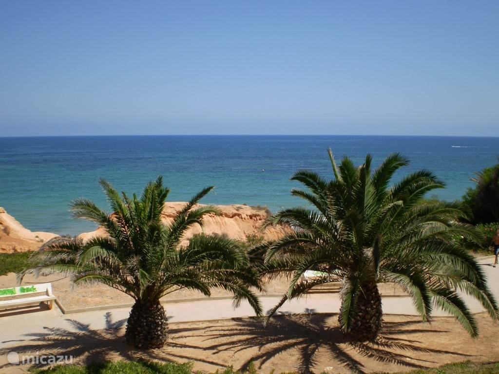 Strand van Orihuela Costa