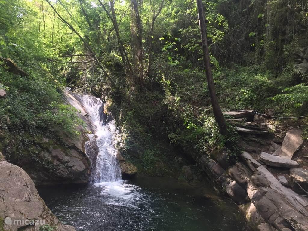 De bron, een prachtig natuurlijk zwembad met ijskoud bergwater