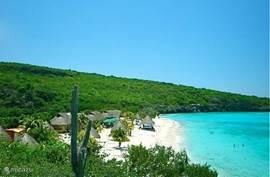 Het mooie strand van Cas Abou Bon Bini Beach